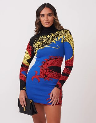 Dragon Print Jumper Dress