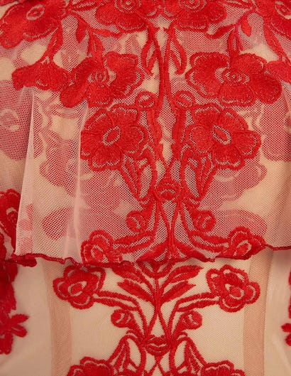 Nude and Red Off-Shoulder Floral Lace Embroidered Mini Dress